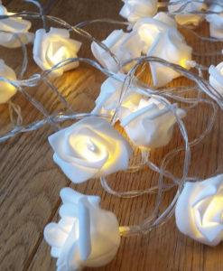 rose_lights